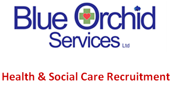 Blue Orchid Services