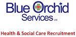 Blue Orchid Services